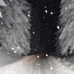 Night ride through Kučaj