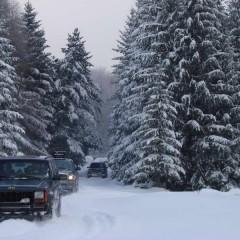 Pushing through Kučaj forests in mid winter