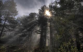 The sun breaking the fog on Šargan