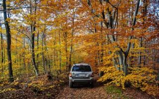 Autumn in Homolje