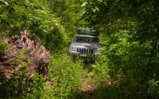 Pushing through Malinik forests