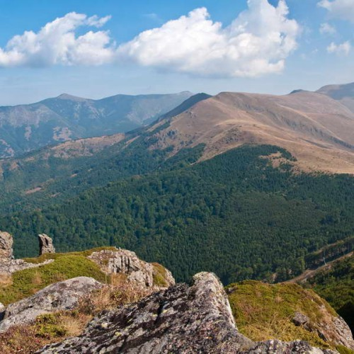 View from Babin Zub towards Midžor