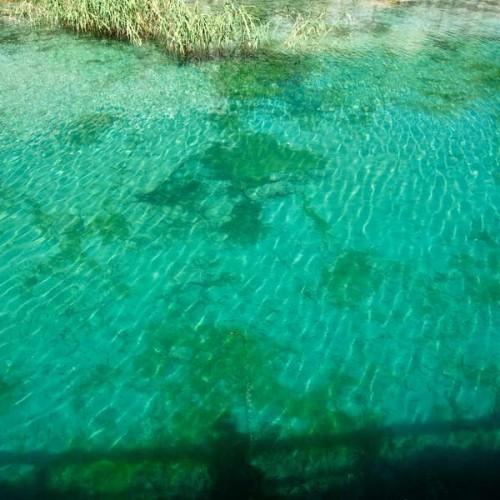 The clear Ohrid lake