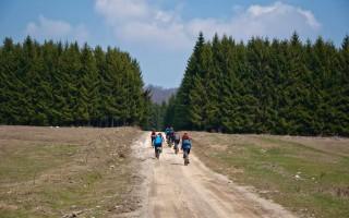 On Velika Brezovica plains, Kučaj mountains
