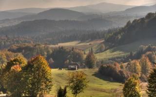 Serene landscape of Golija