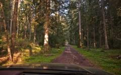 Zlatar trails