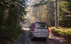 In deep Golija forests
