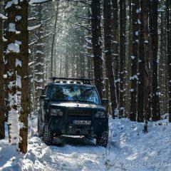 In deep Carpathian forest