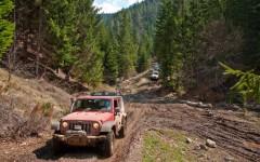 Tara trails