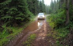 Through the Zlatar forests