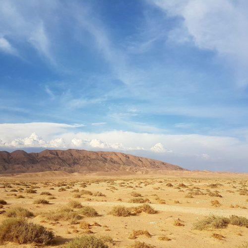 Overland Tunisia